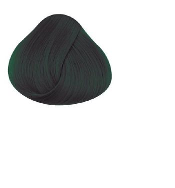 Directions ebony hair dye color